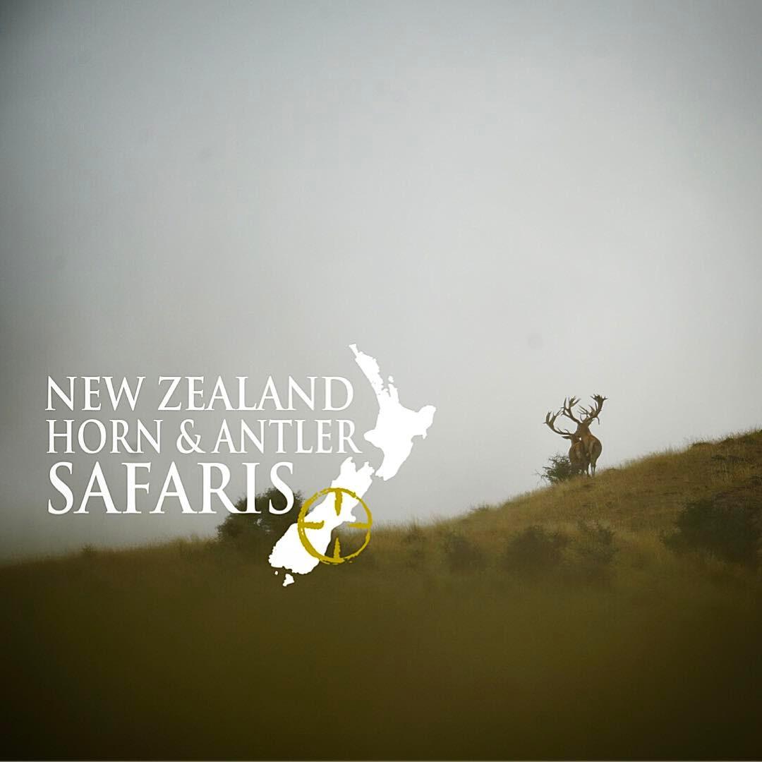 New Zealand Horn & Antler Safaris