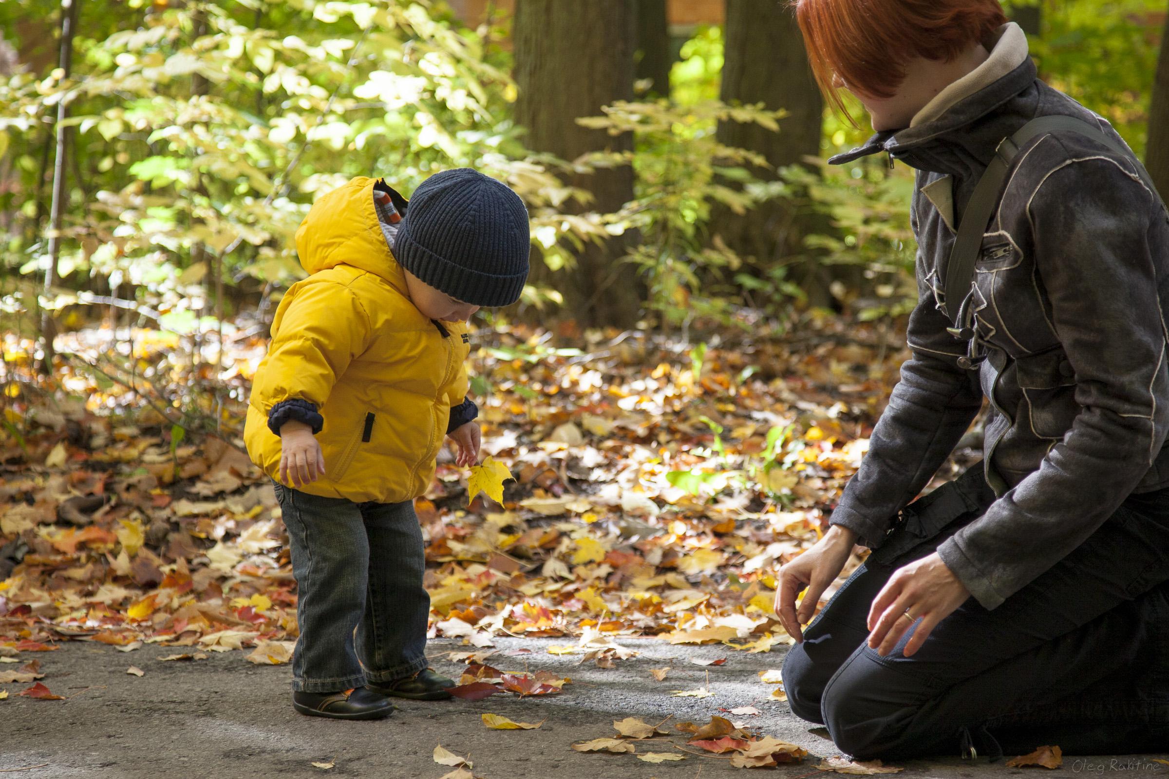 fall-2012-004.jpg
