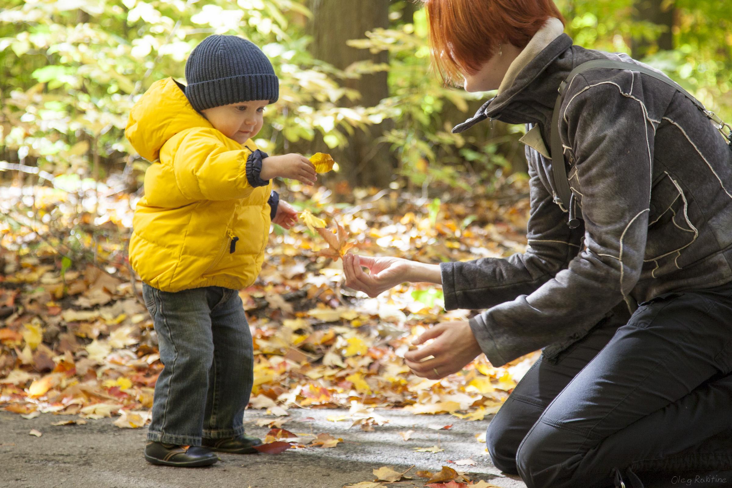 fall-2012-005.jpg