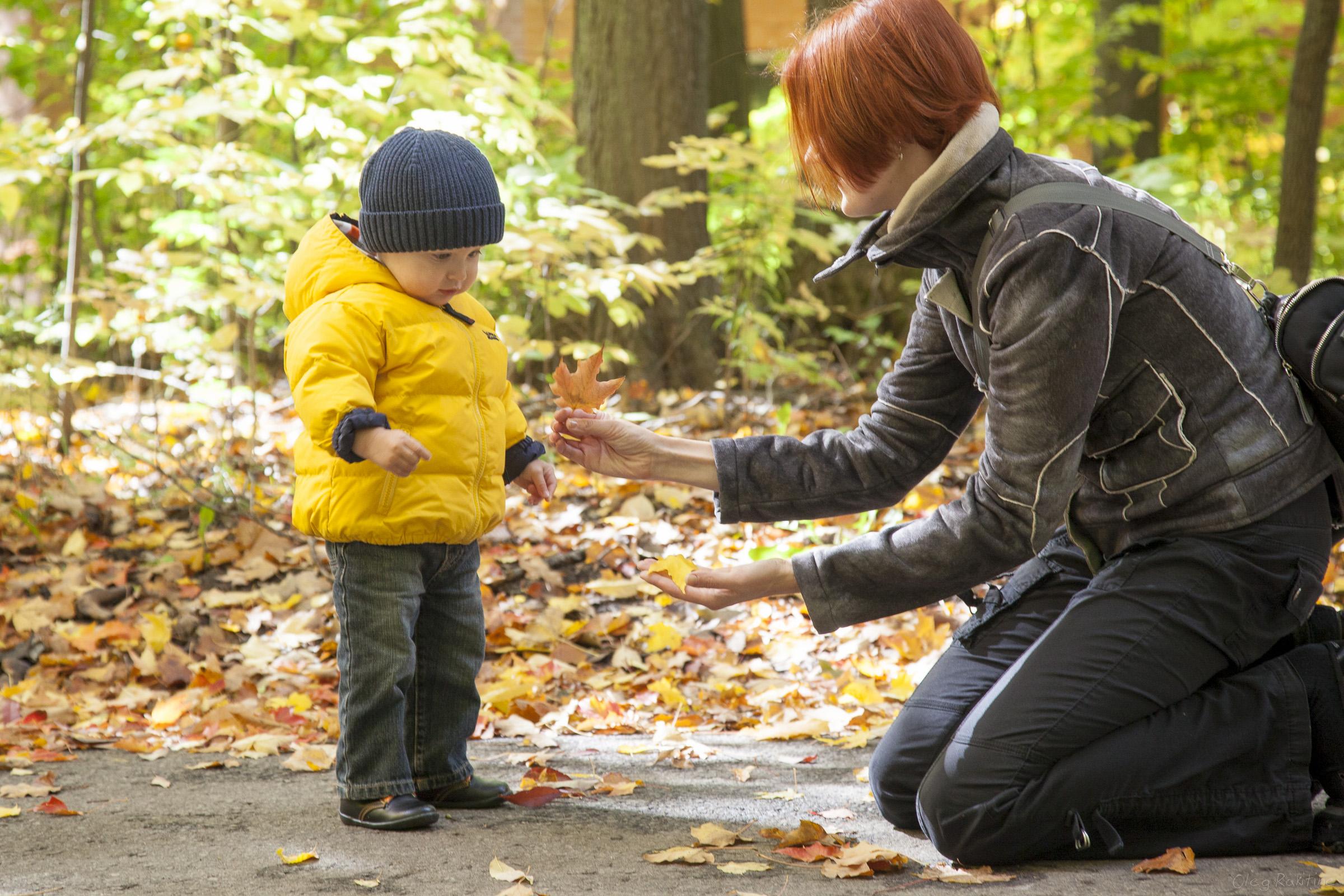 fall-2012-006.jpg