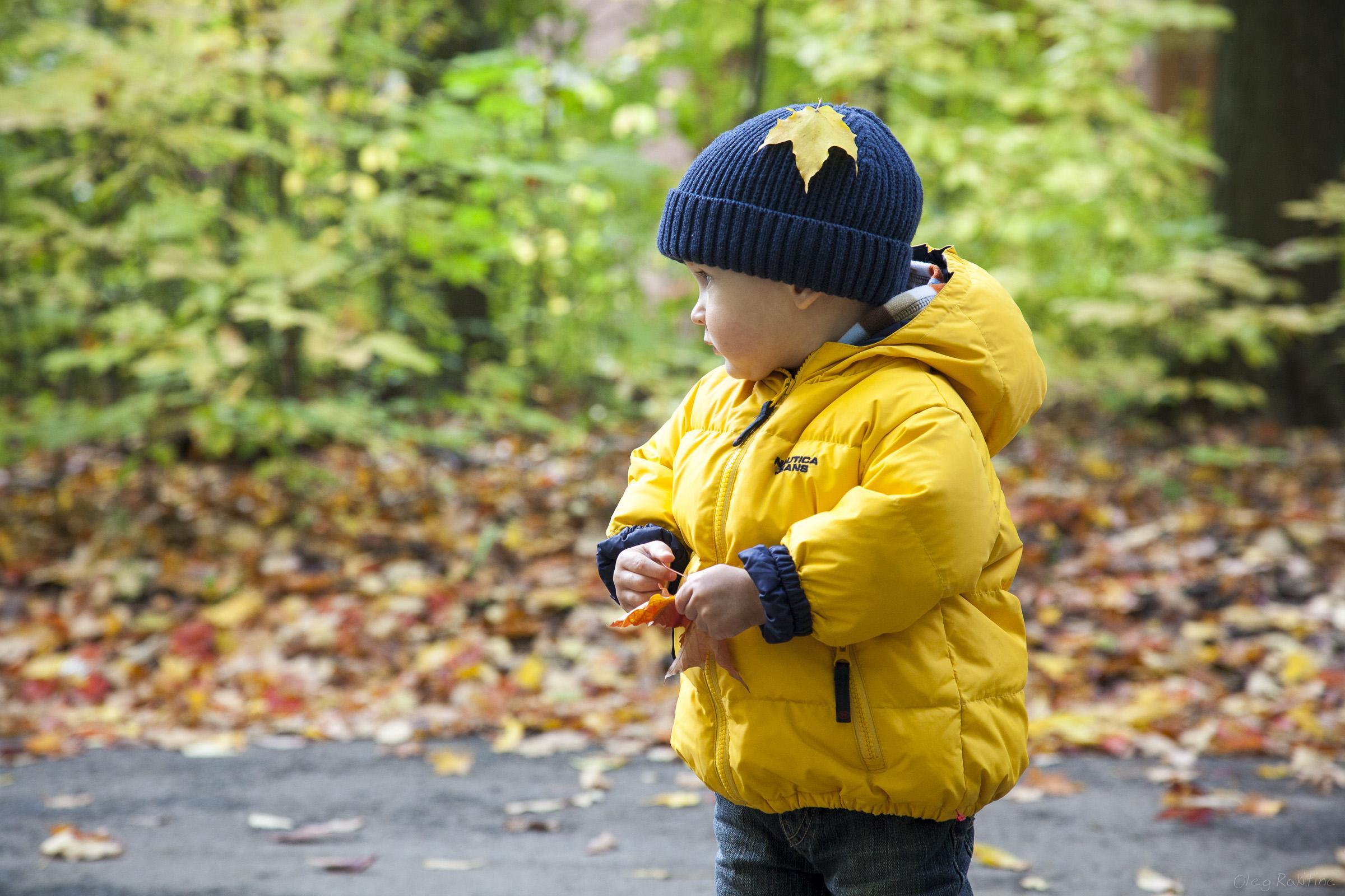 fall-2012-008.jpg