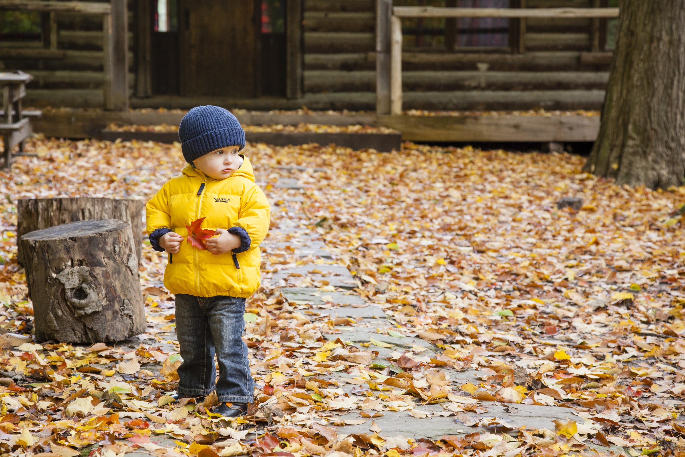 fall-2012-012.jpg