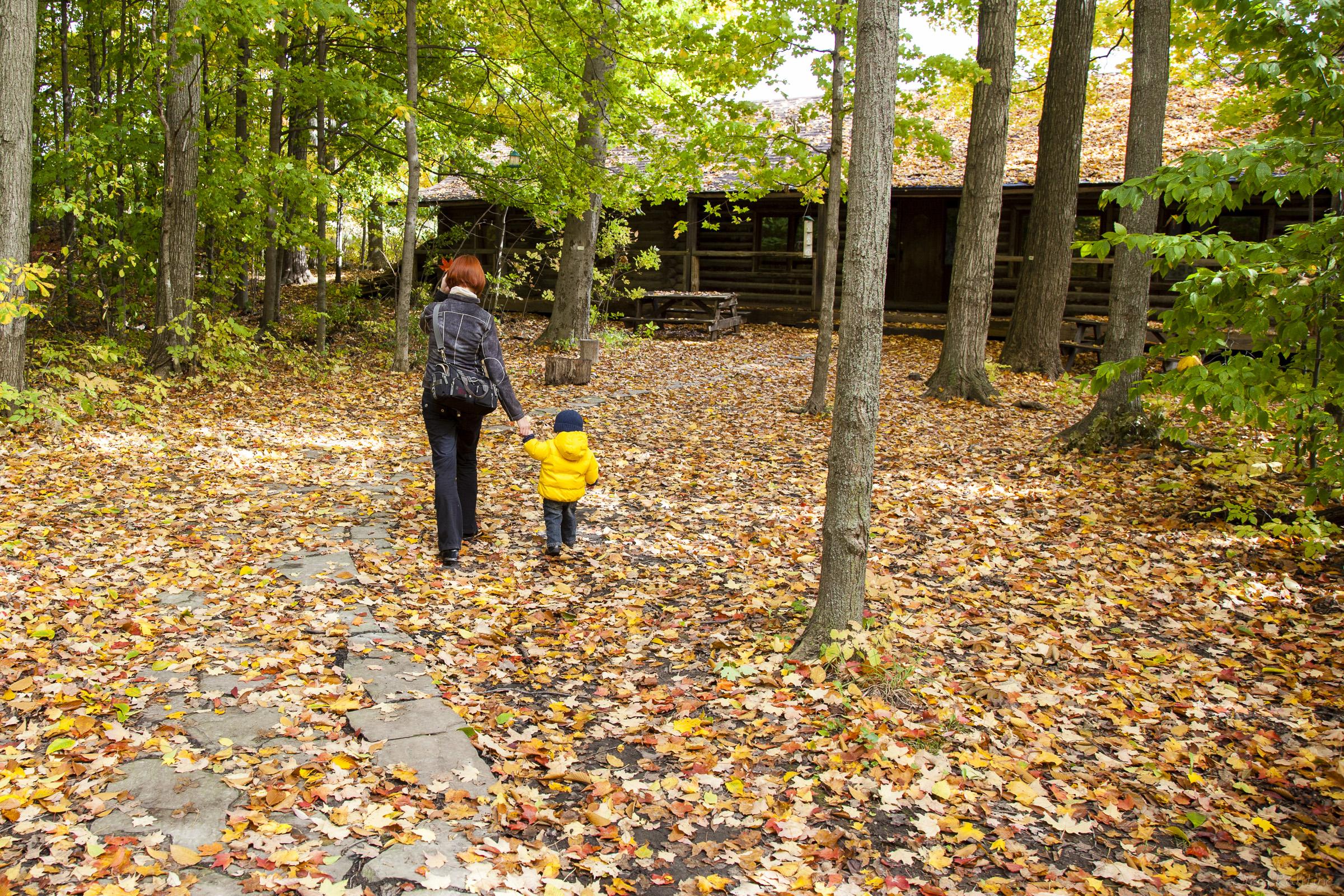 fall-2012-010.jpg