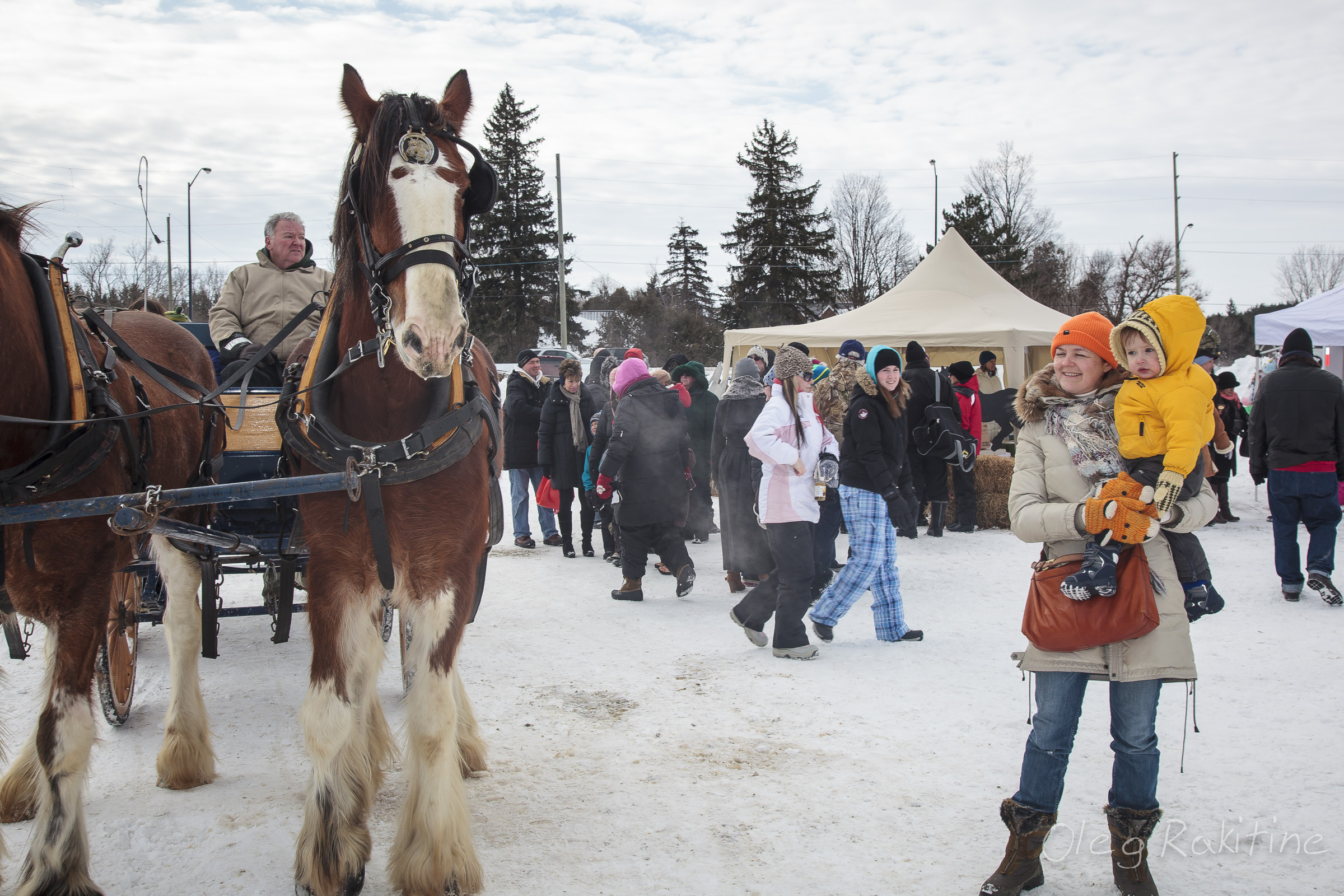 caledon-snowfest-006.jpg