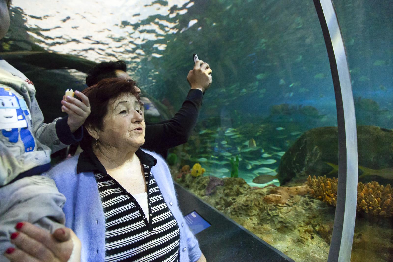 aquarium-013.jpg