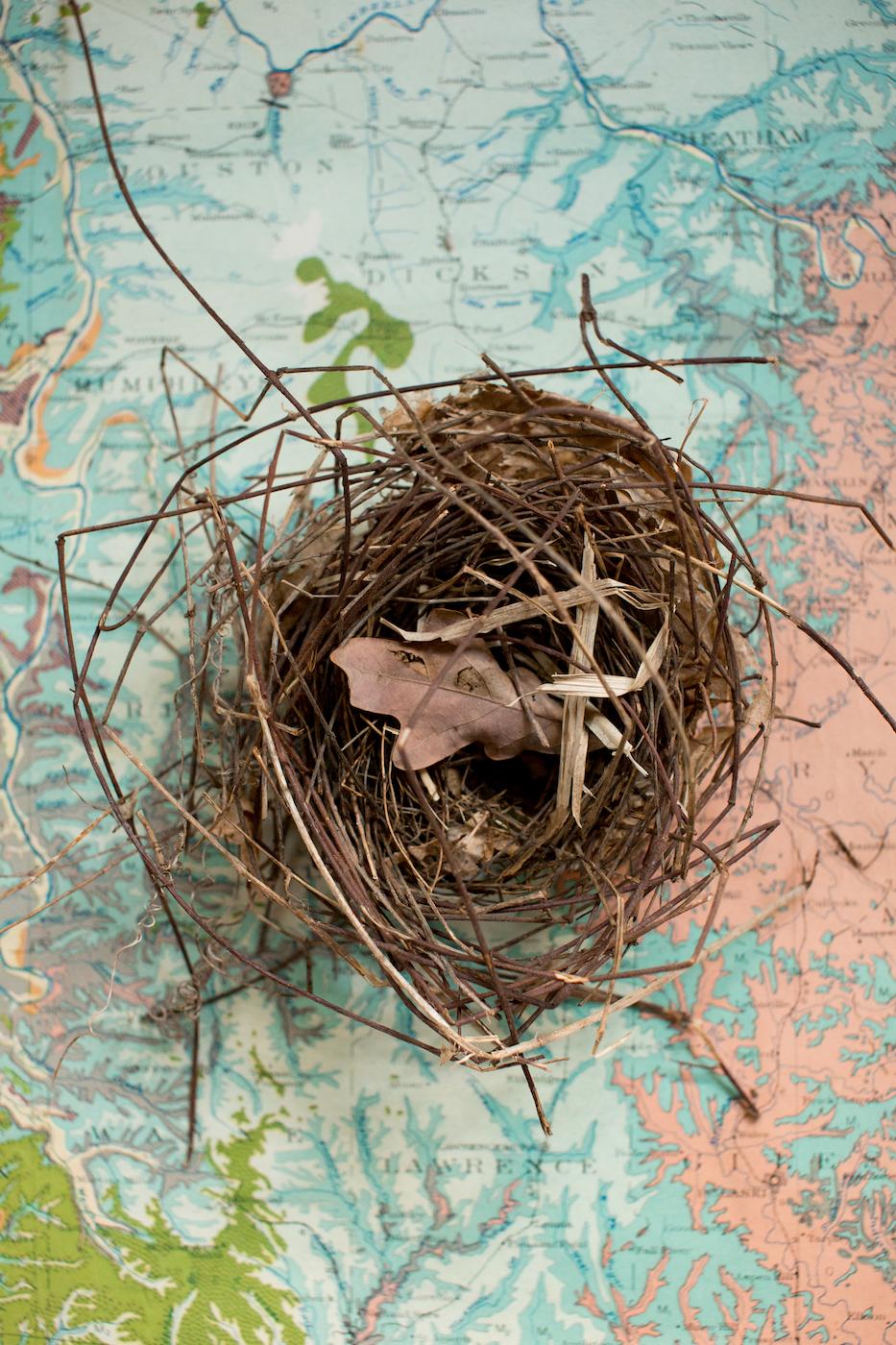 jennifer callahan photography asheville nc-14-2-2.jpg