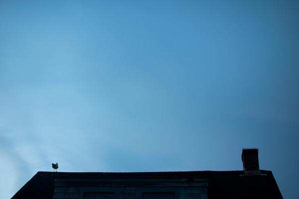 Dean + Marszalek chimney.jpg