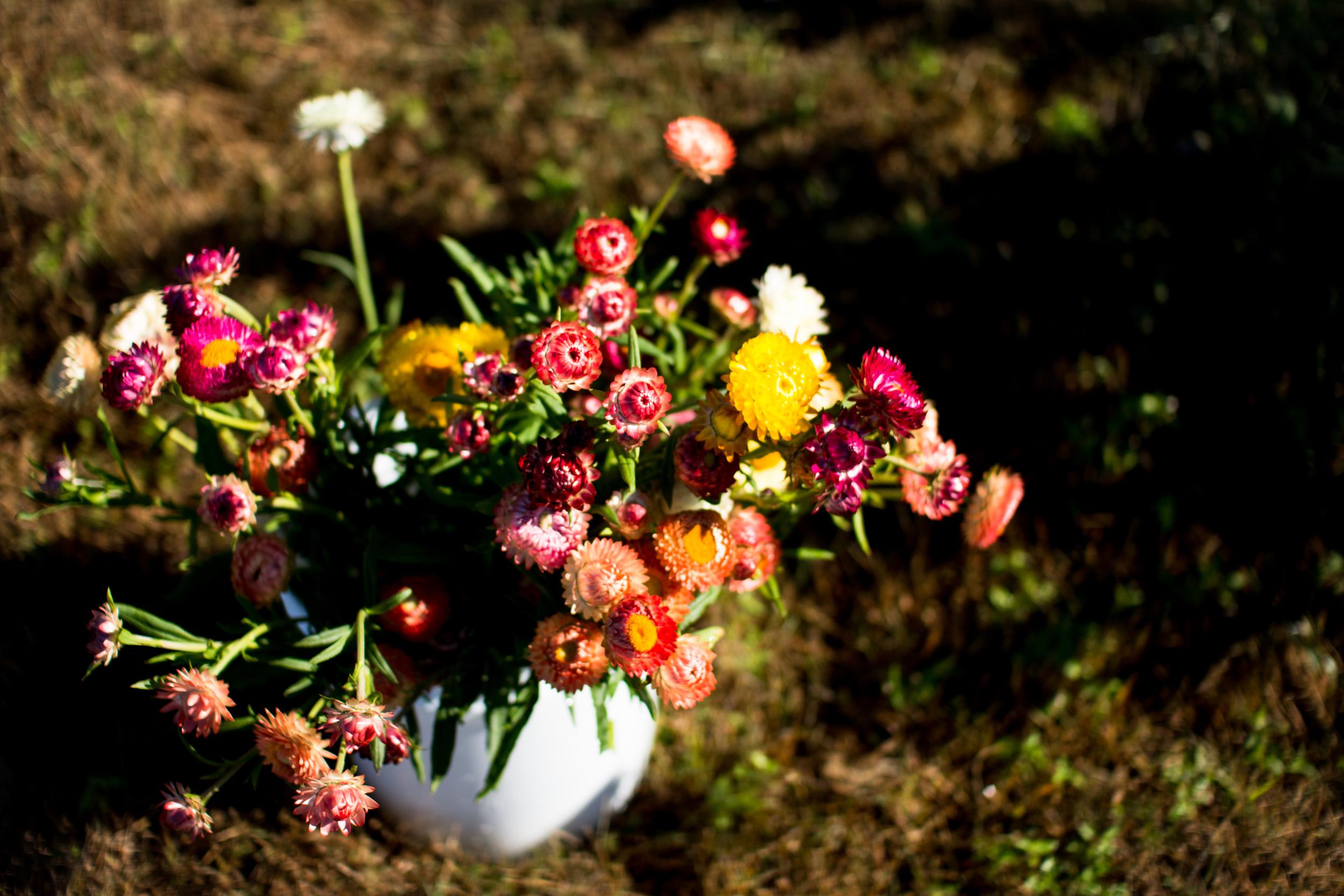Field Floral Studio-22.jpg