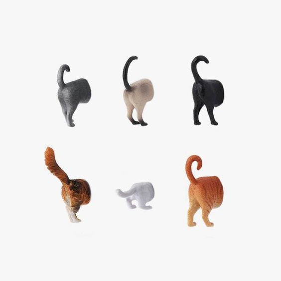Things I'm loving cat edition. Cat butt magnets from  Kikkerland Design