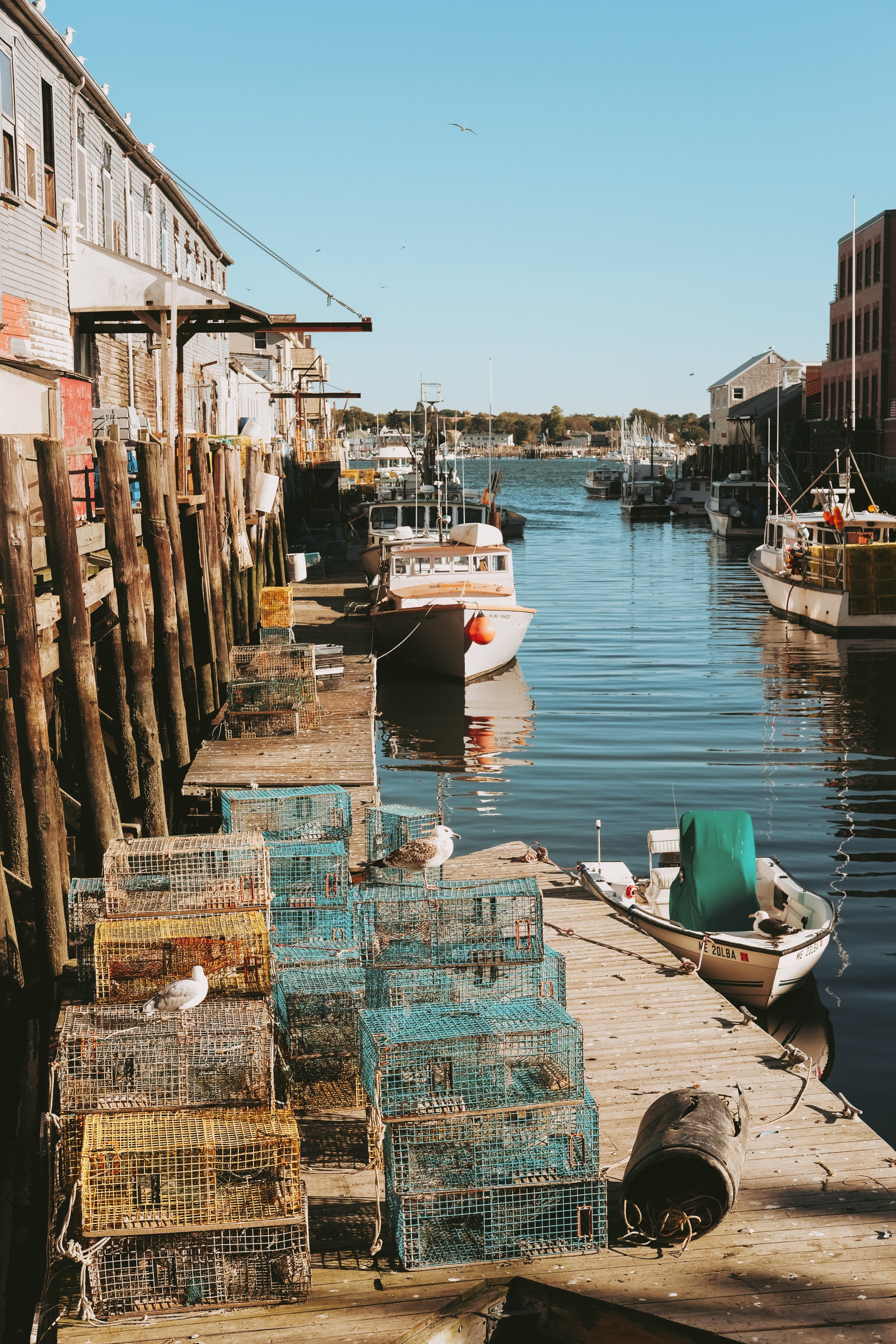 Places to stay in midcoast Maine for you and your wedding guests | Photo by  Matt McNulty  on  Unsplash