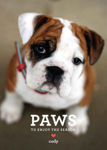 Paws, Editor's Pick | Minted's 2012 Holiday Challenge