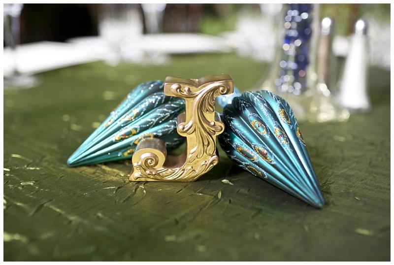 Franklin-Park-Wedding Peacock-Theme_0064.jpg
