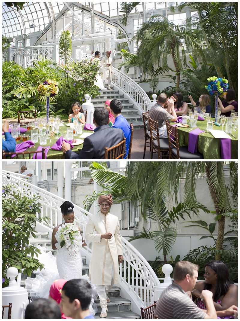 Franklin-Park-Wedding Peacock-Theme_0070.jpg
