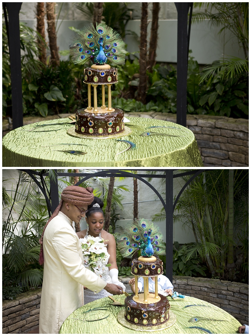 Franklin-Park-Wedding Peacock-Theme_0073.jpg