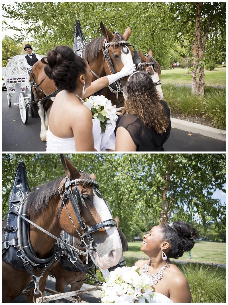 Franklin-Park-Wedding Peacock-Theme_0079.jpg