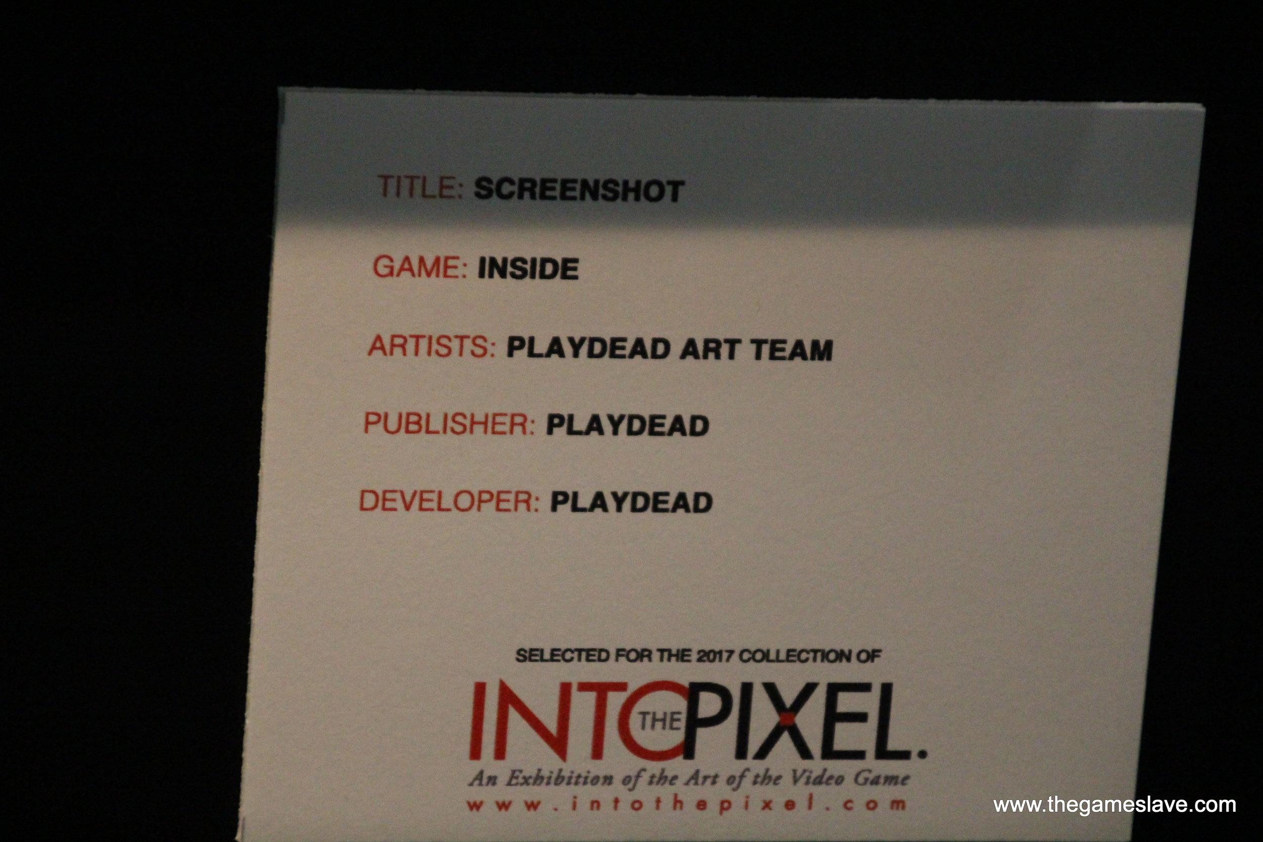Into the Pixel (10).JPG