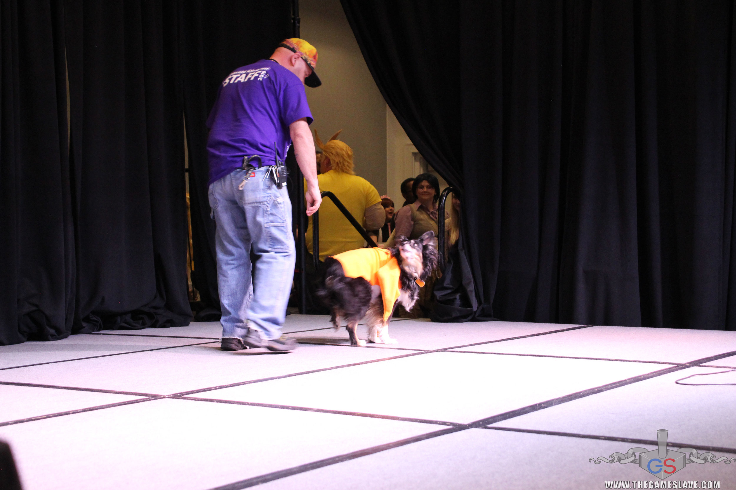 COAF 2019 Costume Contest-29.jpg