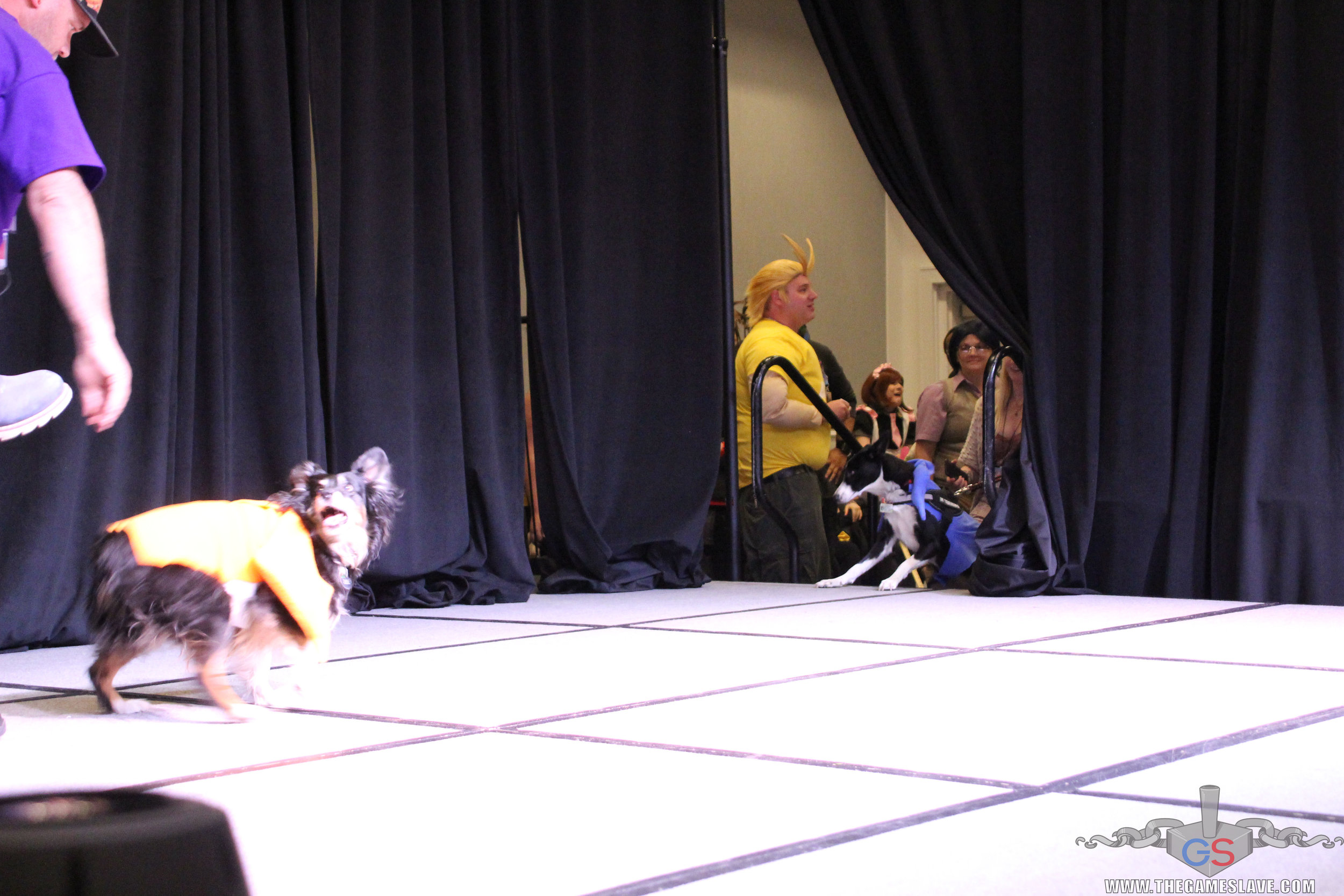 COAF 2019 Costume Contest-34.jpg