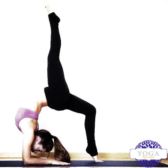 yoga1back.jpg