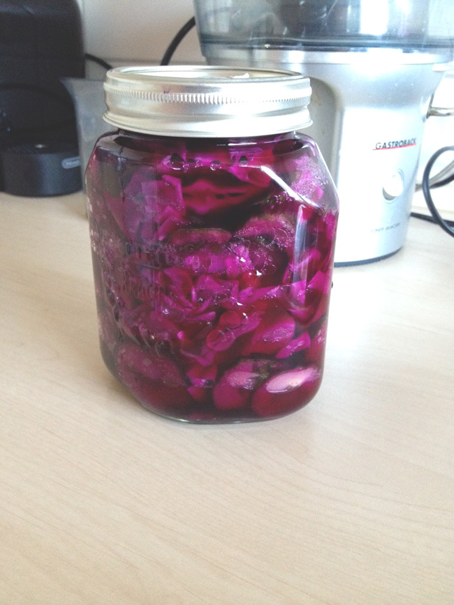 First batch of homemade fermented veggies