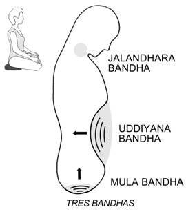 Three bandhas  via