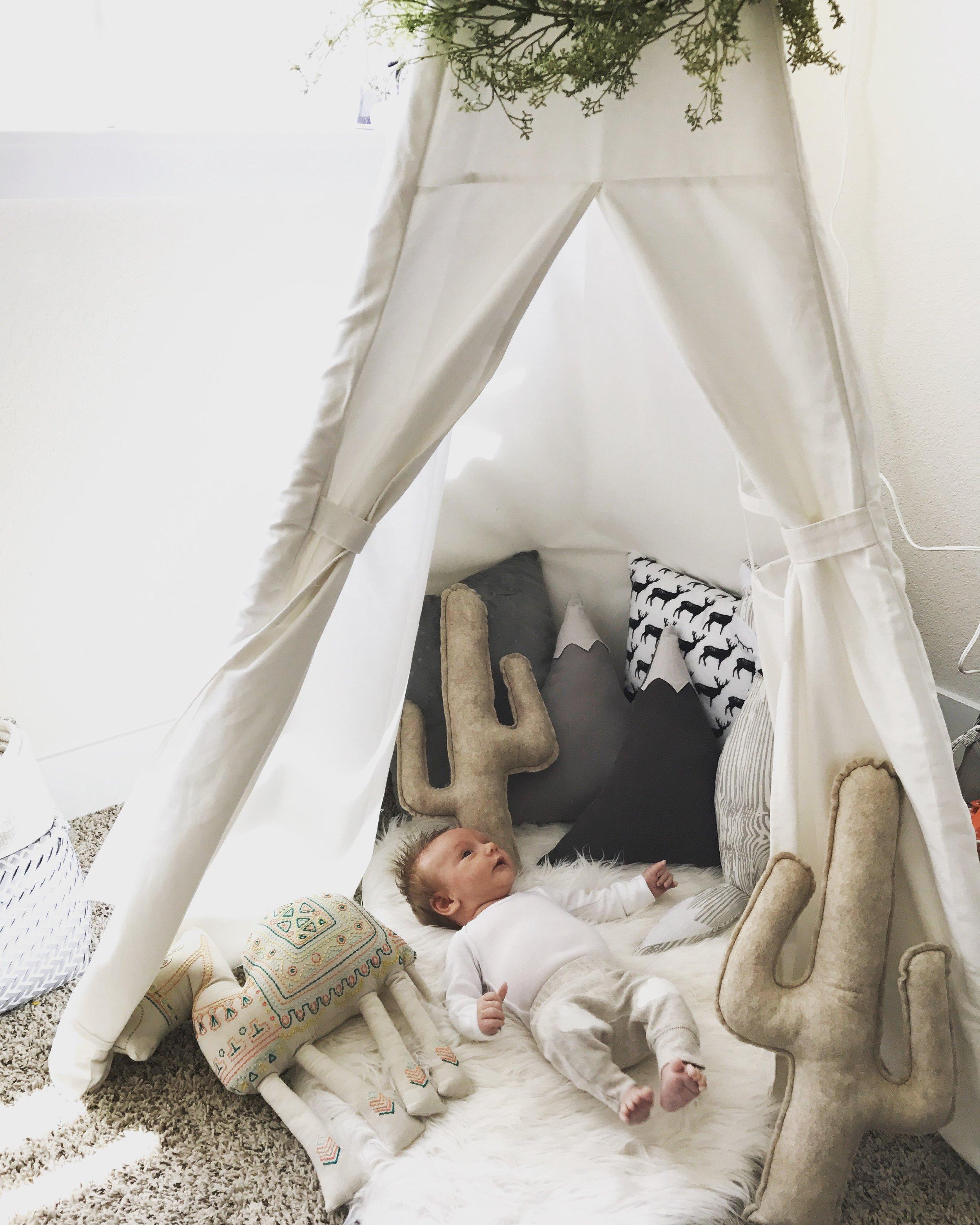Hudsons-Nursery-Unveiling