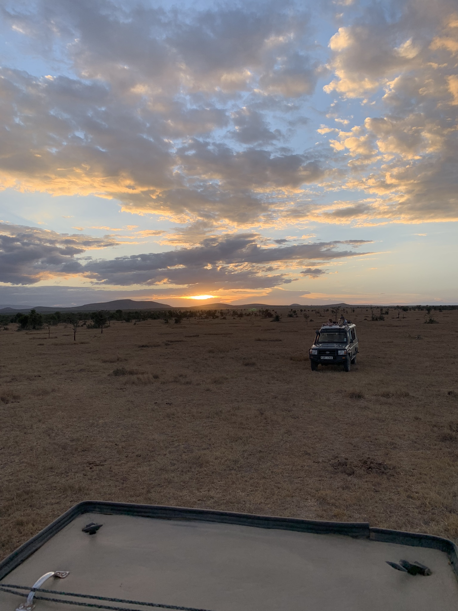 Kenya - Game Drive.JPEG