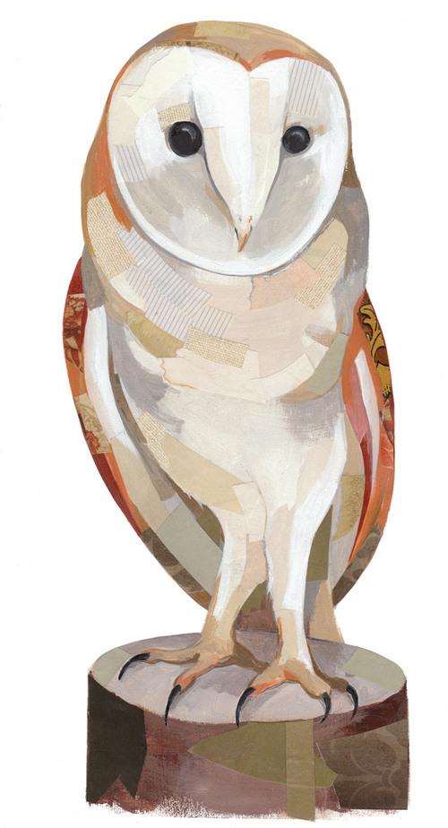 Owl750wide.jpg