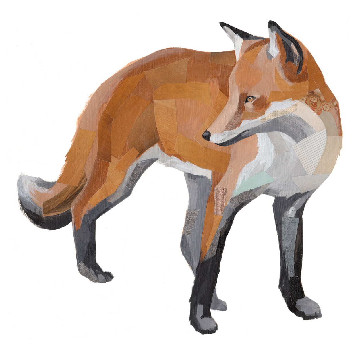 FoxThumb.jpg