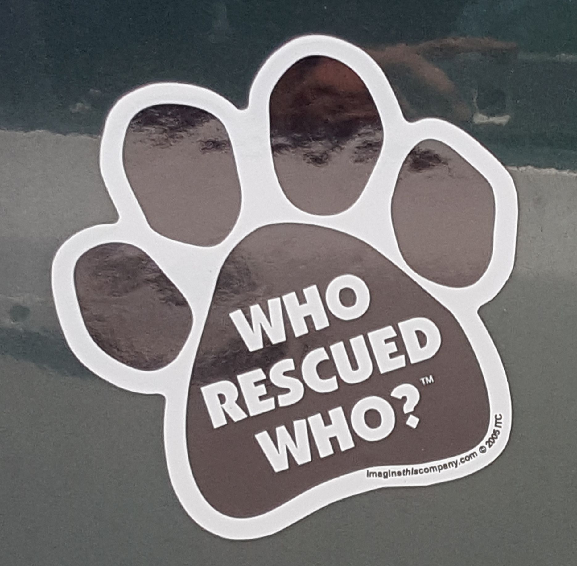 Who Rescued Who.jpg