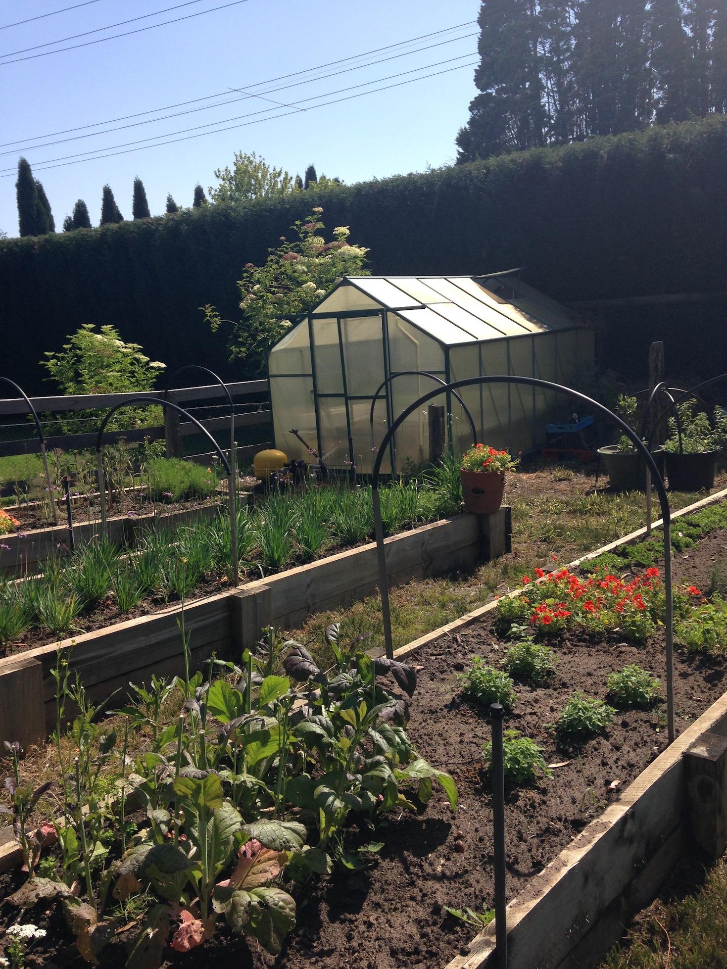 kitchen gardens.jpg