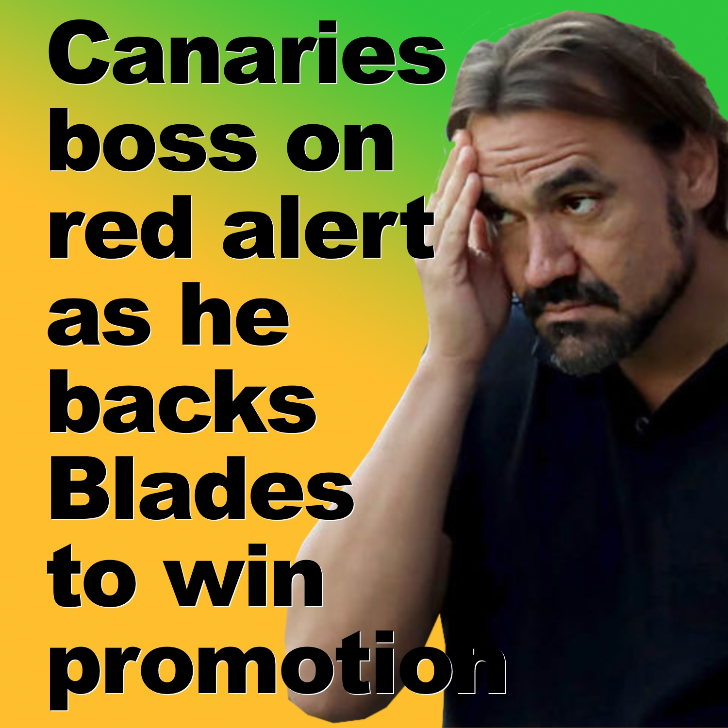 Norwich boss on red alert as he  backs Blades to win promotion