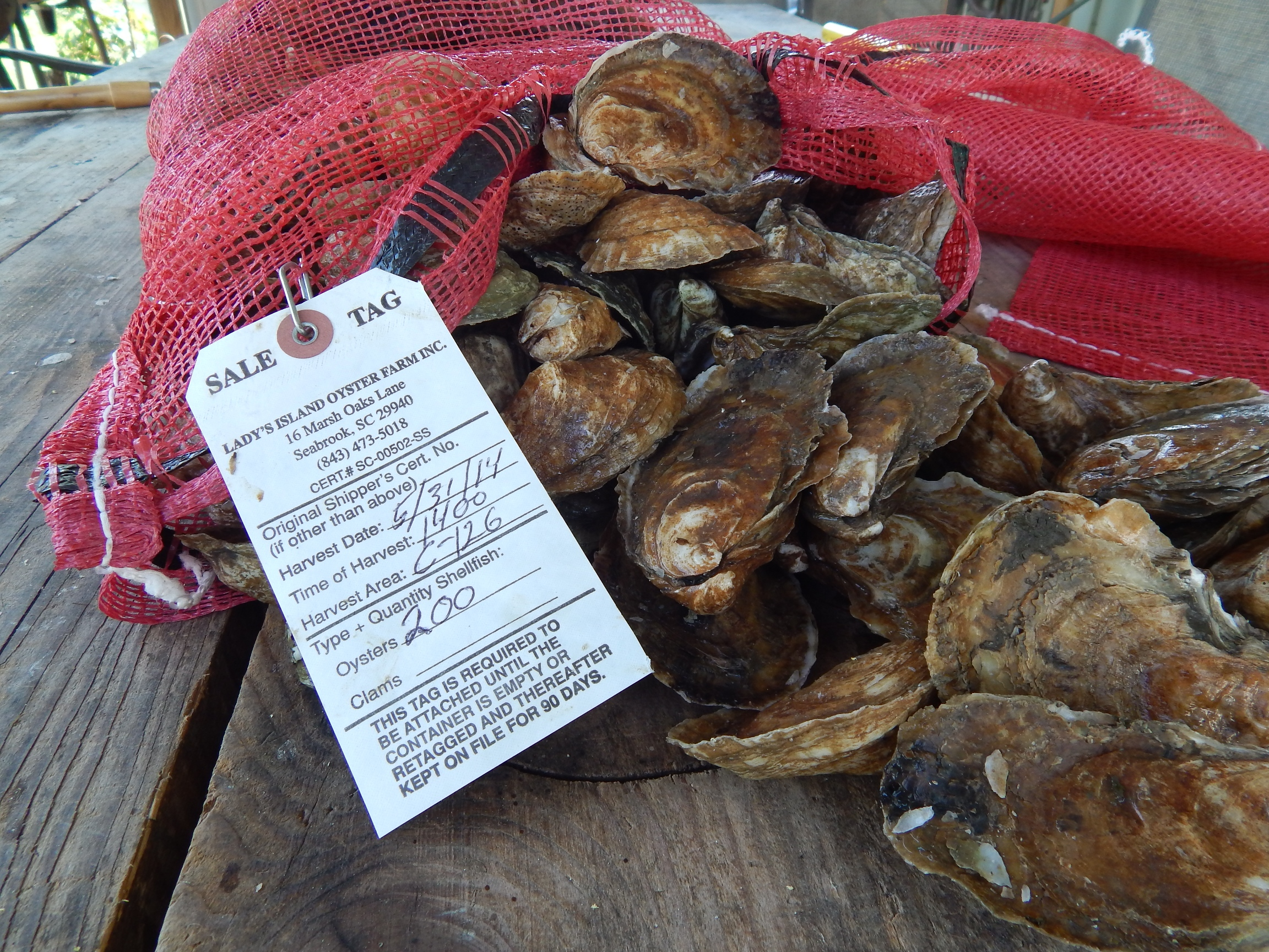 bagged oysters-50.JPG