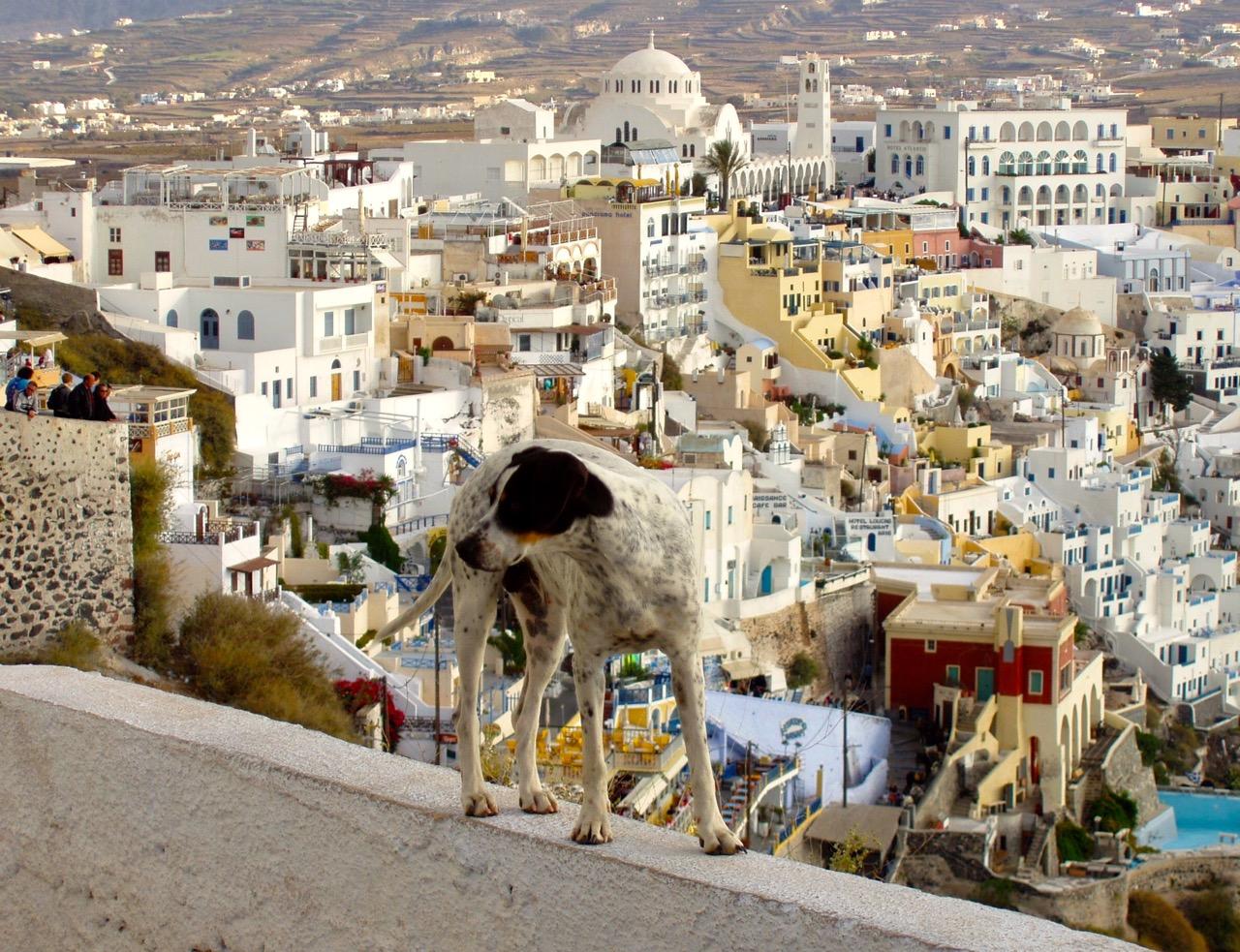 126. On top of the world in Santorini.jpg