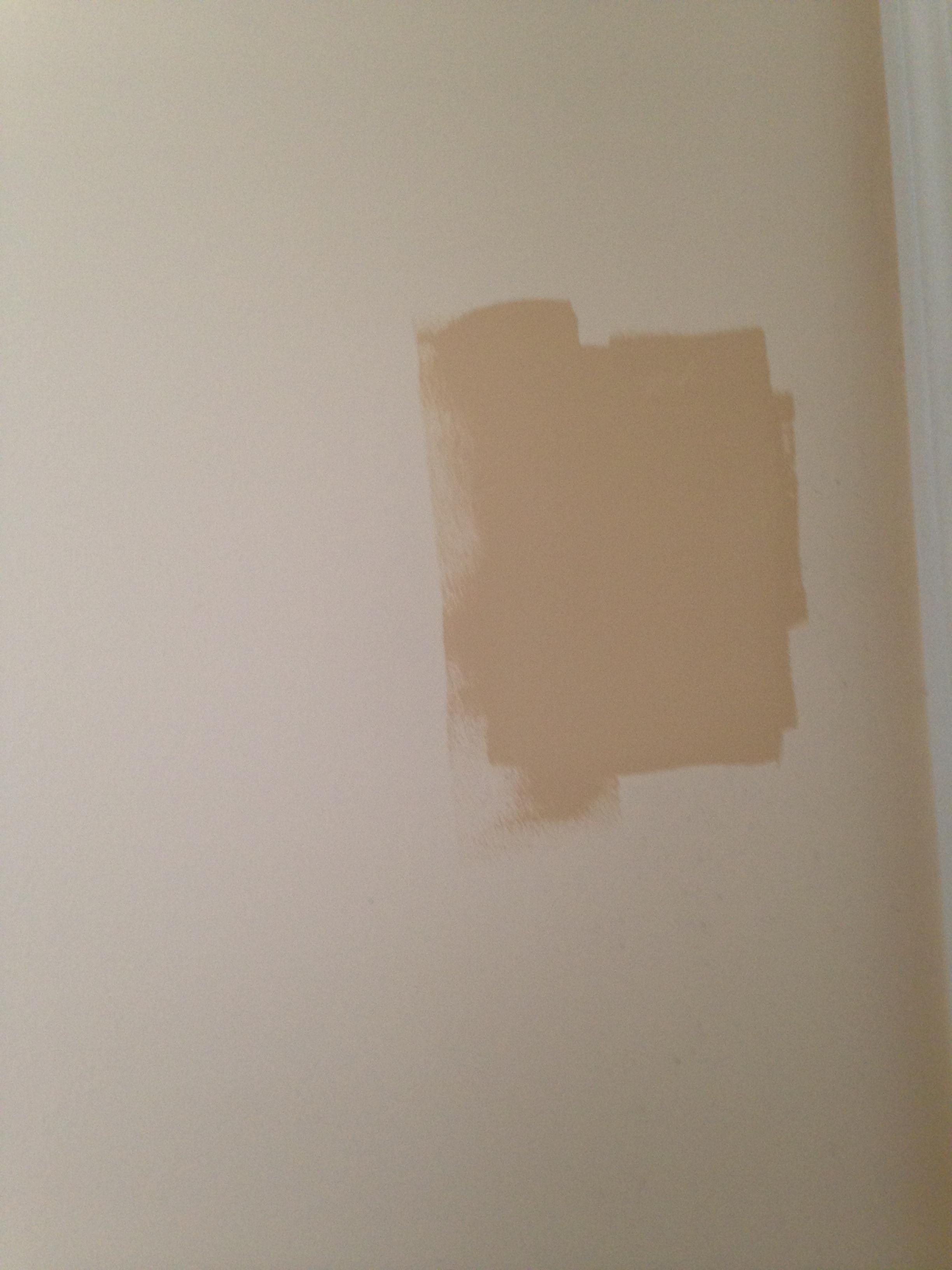 "But I tried another paint sample in the laundry room to compare it to the white wall. I'll go ahead and tell you that despite the many samples after this, this was ""the one""."