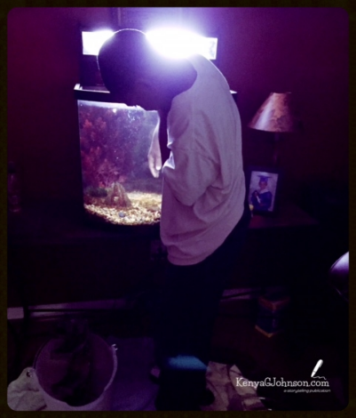 A few minutes after this photo was taken, the hood light fell in the tank.  No humans or fish were harmed in the process.