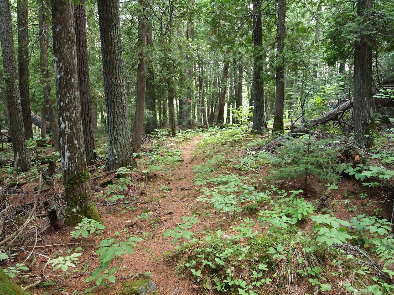 Hiking7.jpg