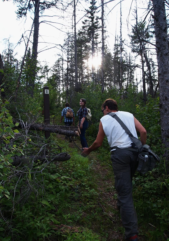 hiking3.jpg