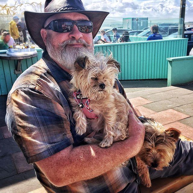 Nibly & Stan vying for knee real estate . . . #shotwithiphone #iphone #snapseed #dogs #dogsofinstagram #dogstagram #pups #puppydog #puppygram #puppylove #puppy #mullaghmore #sligo #wildatlanticway #coast #bigsky #ireland #discoverireland #instaireland #irelandtravel #visitireland #strandhill #shellscafe