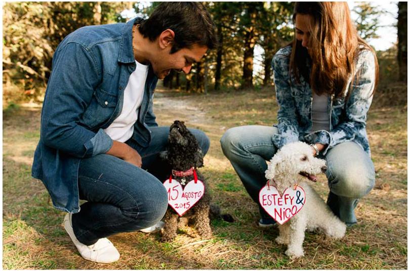 sesiones de novios con perros (4).jpg