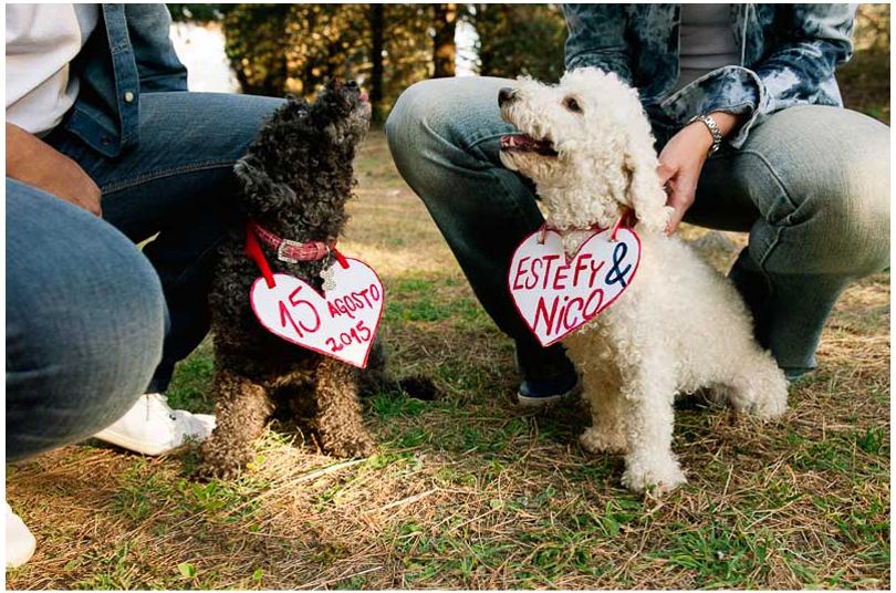 sesiones de novios con perros (3).jpg