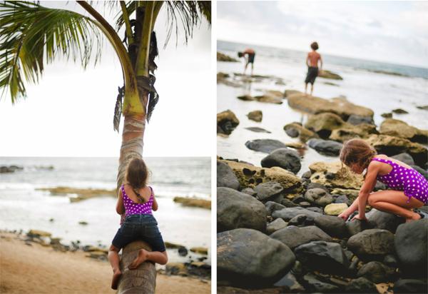 hawaii5.jpg