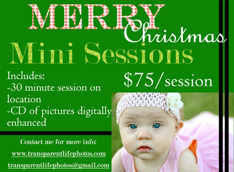 2010 Christmas Promo.jpg