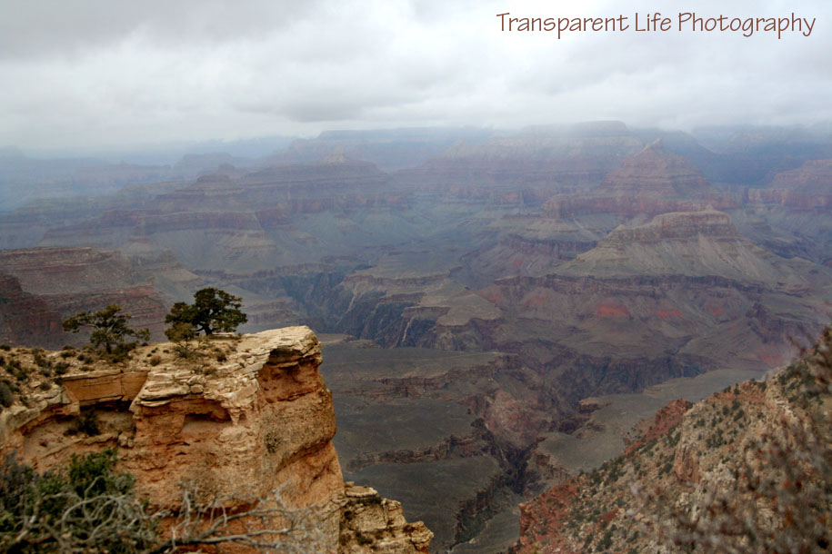 2010 Grand Canyon Trip for facebook 009.jpg
