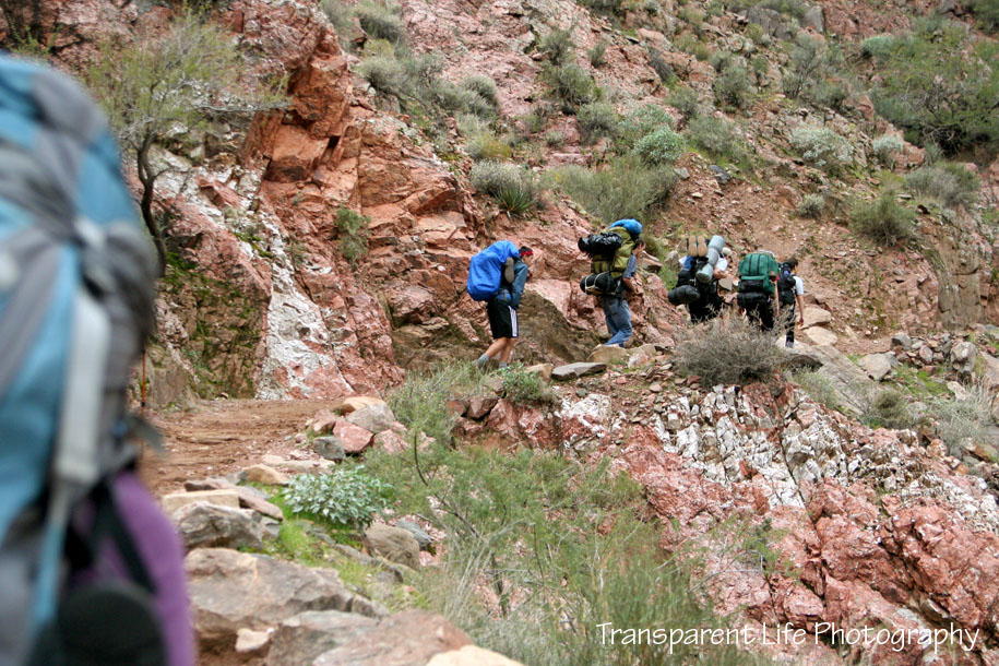 2010 Grand Canyon Trip for facebook 060.jpg