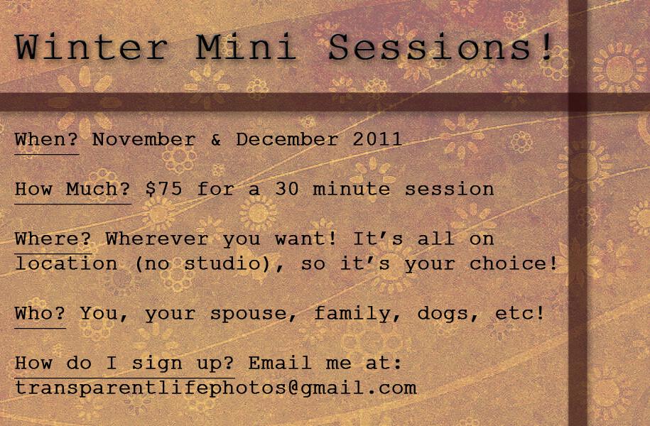 Winter Minis - Nov&Dec.jpg
