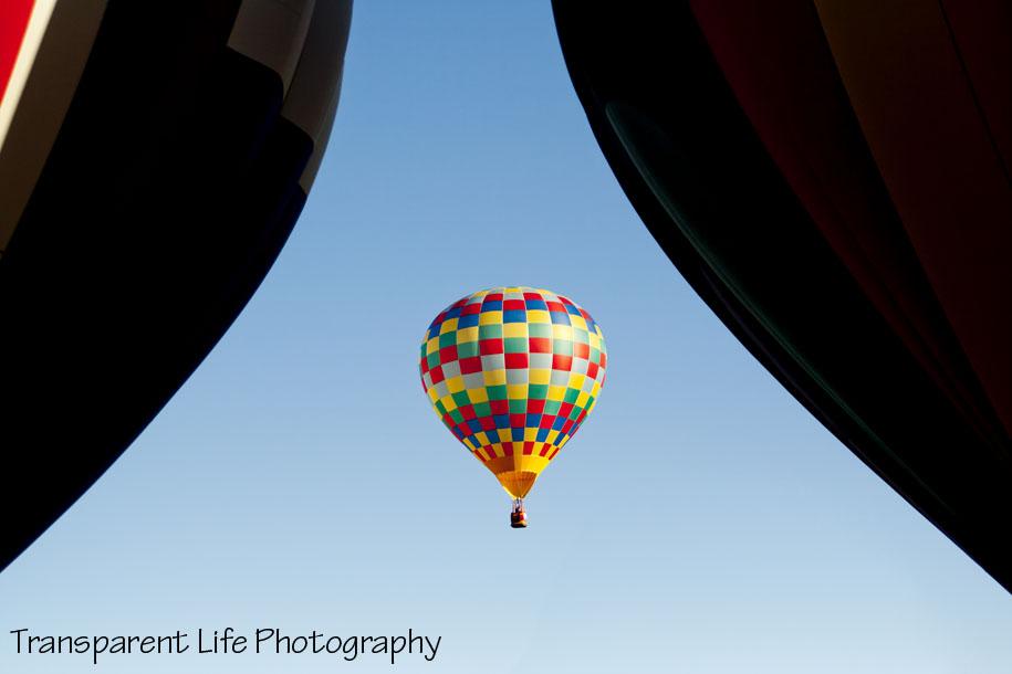 08 - 2011 Albuquerque Balloon Festival.jpg