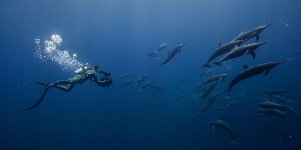Underwater cameraman Roger Horrocks Netflix Costa Rica