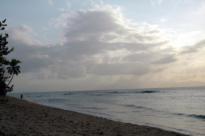 Gwada2010-0206.jpg