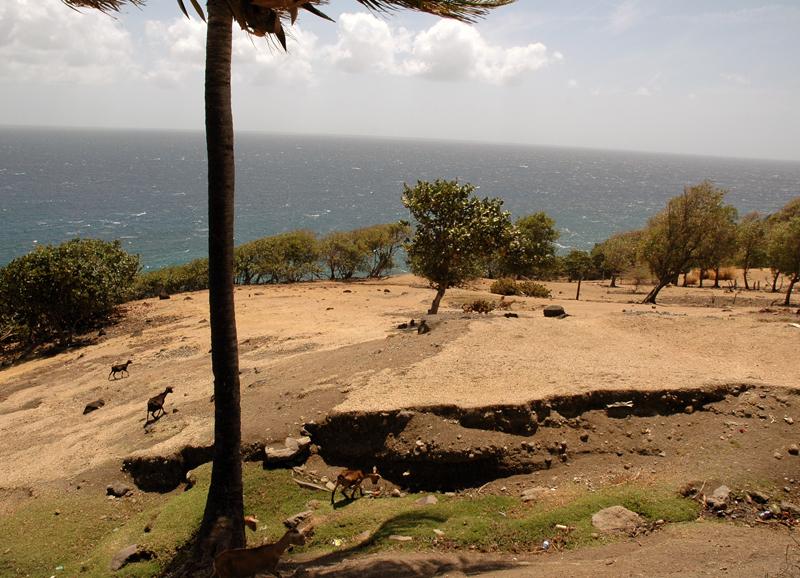 Gwada2010-0650.jpg